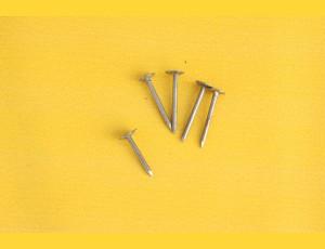 Fibre nails FE 25x2,50 / 3,0kg