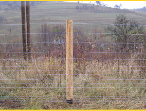 Knotted fence 175/15/23dr. / 2,20x3,10