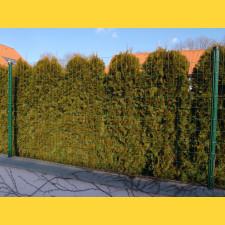 E-PLAST 150cm / 25m / zelený