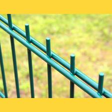 Panel DOUBLE 6/5/6 / 1630x2500 / ZN+PVC6005