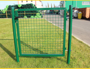 Gate BJ ECO 2000x1000 / ZN+PVC6005