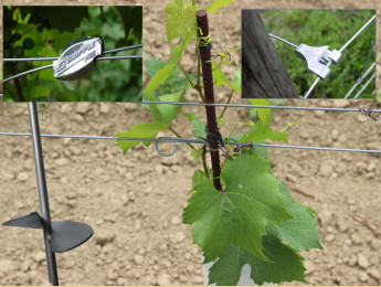 Wineyard accessories
